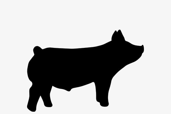 Show Pig Thank You Clip Art