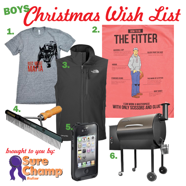 christmas list for boys