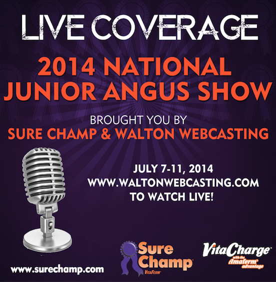National junior angus show to broadcast live sure champ live coverage junglespirit Image collections