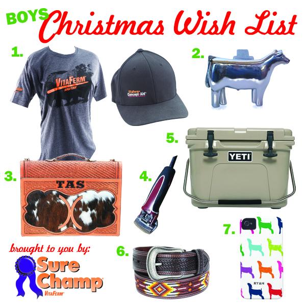 stock show life boy christmas wish list