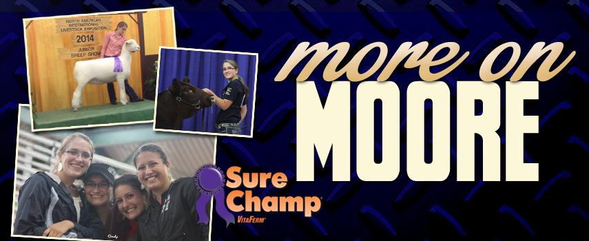 surechamp-blog-moreonmoore