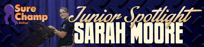 surechamp-blog-sarahmoore