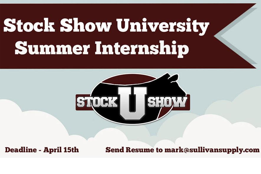 ssu-internship-featured