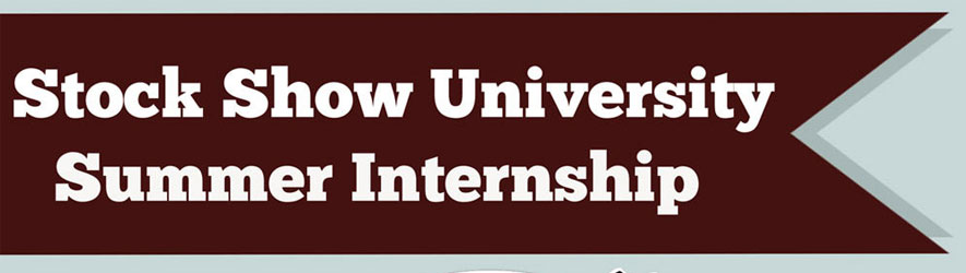 ssu-internship-header