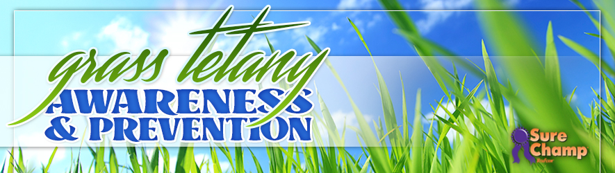 surechamp-grasstetany-april2015-header