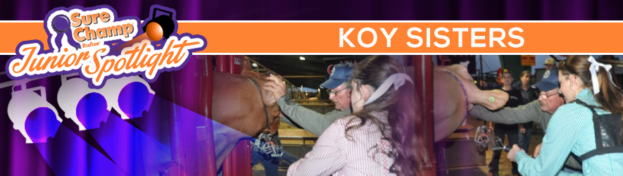 surechampspot-koy-header-jan2016