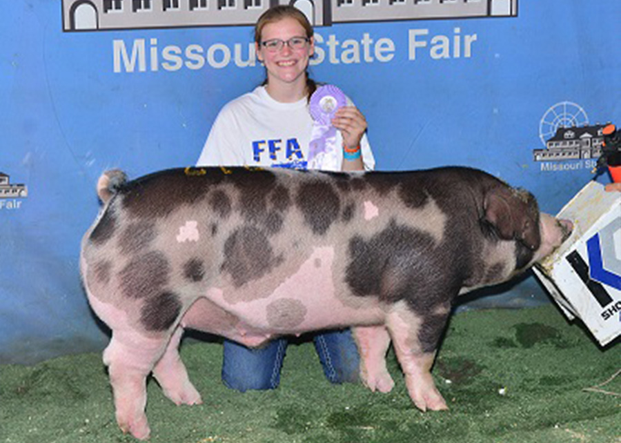 Reserve Champion Spot Barrow2017 Missouri State FairRachel Grimes