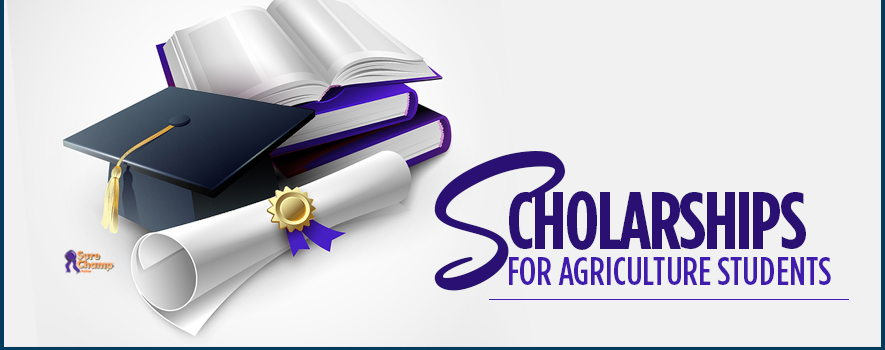 Scholarships for Agriculture Students – Sure Champ